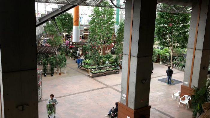 2階から見た植木直売所