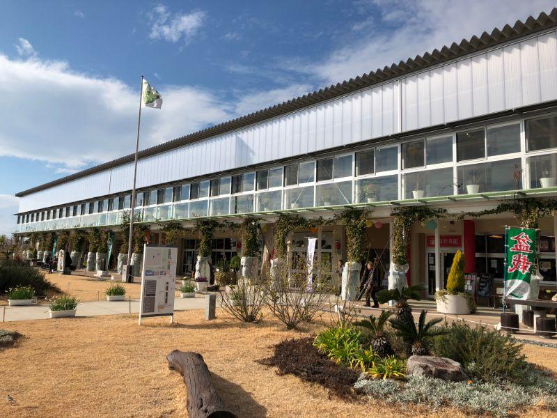 保田小学校の建物