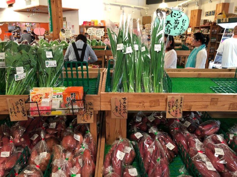 鮮度の高い野菜たち